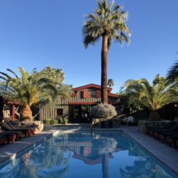 Palm Springs, winter salads, and page-turners